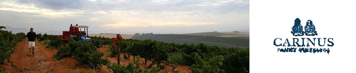 Carinus Family Vineyards
