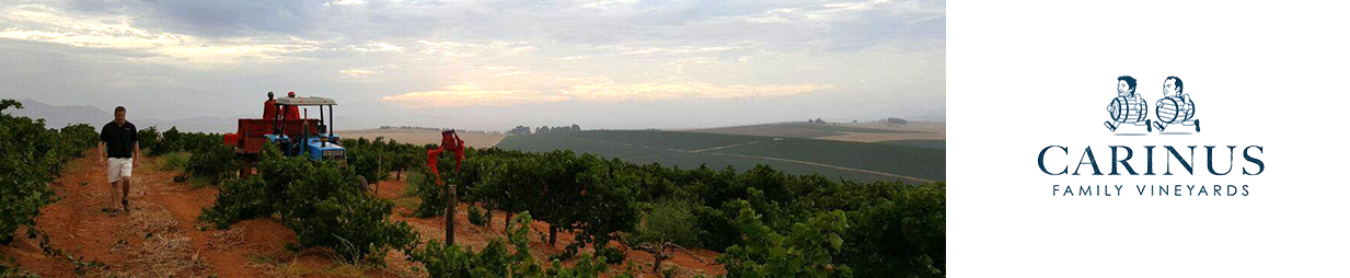 Carinus Family Vineyards